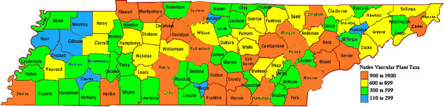 Tennessee Diversity Map
